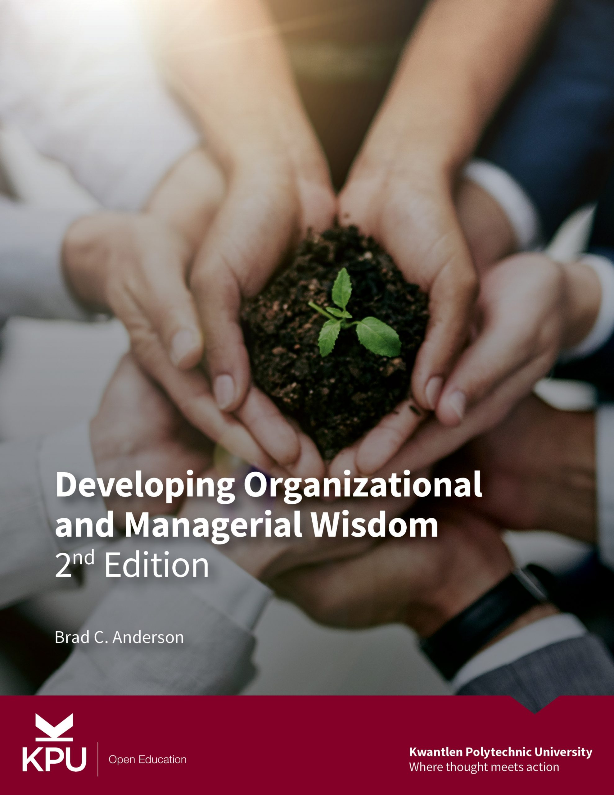 Cover image for Developing Organizational and Managerial Wisdom - 2nd Edition