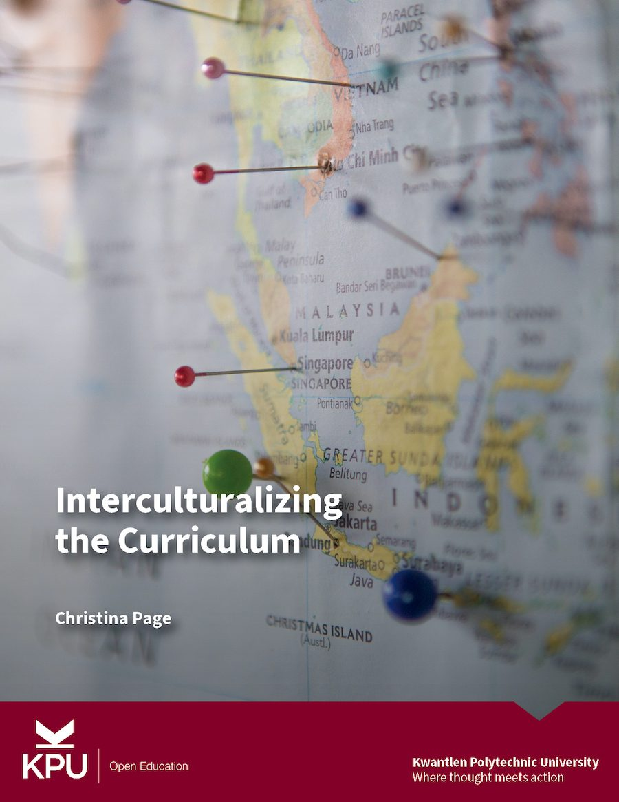 Cover image for Interculturalizing the Curriculum