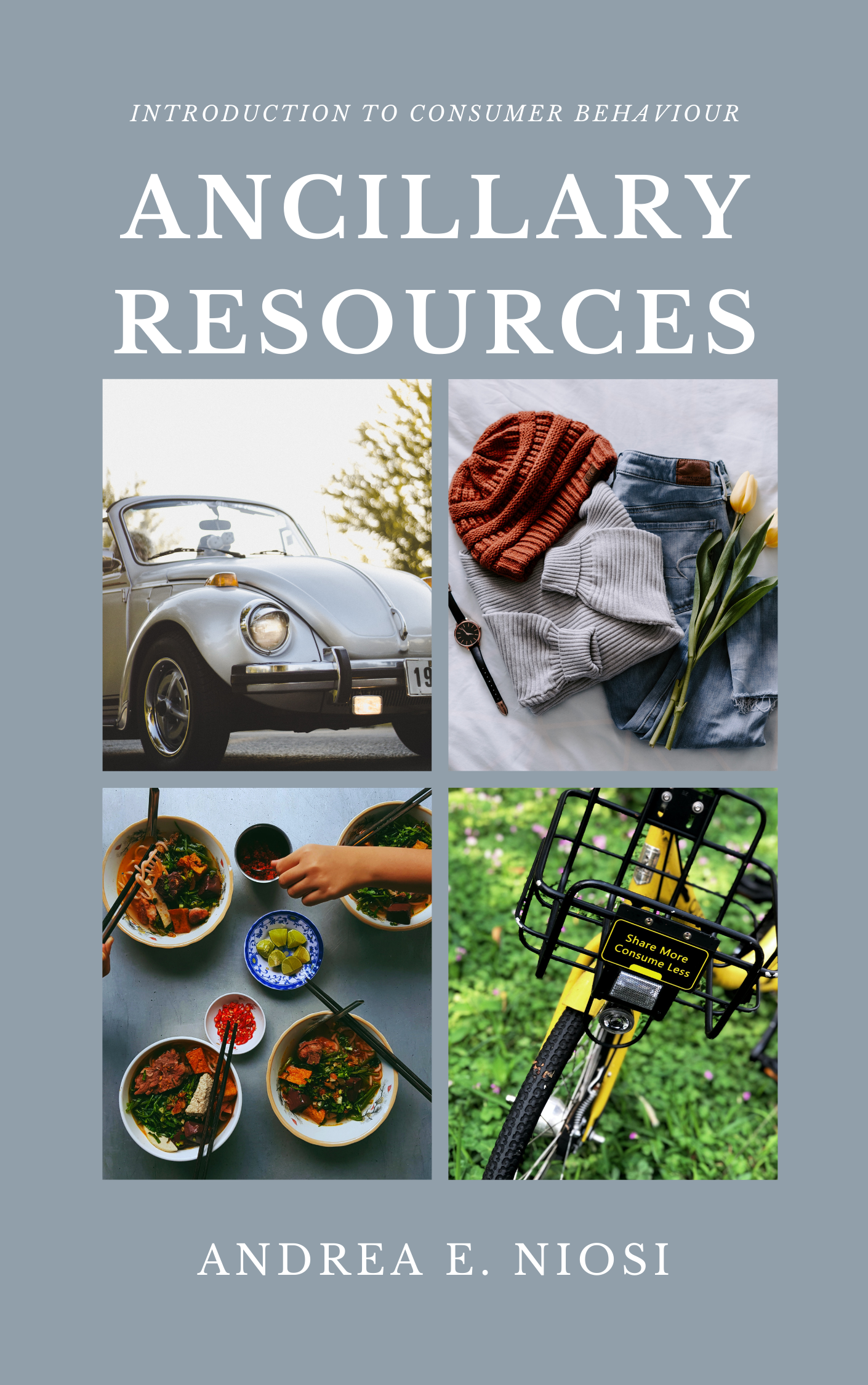 Cover image for Introduction to Consumer Behaviour Ancillary Resources